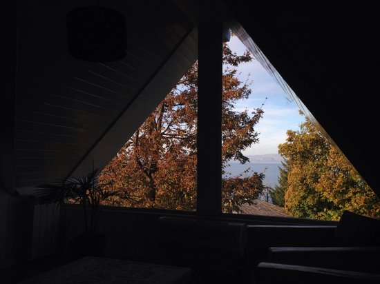 Green House Hostel Bariloche: View from the attic at Greenhouse