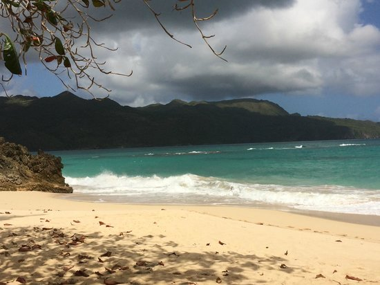 Tauro Tours: The beach in Dominican Republic