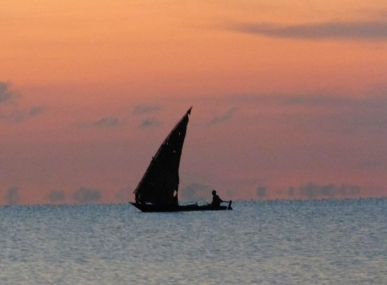 Saadani Safari Lodge : dhow from the tent with the sunrise