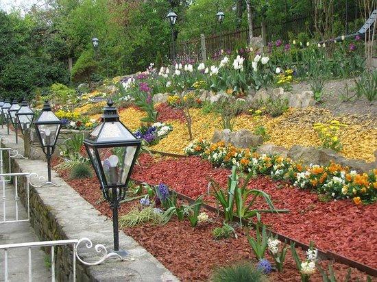 Landhaus Fuhrgasslhuber: The rear garden