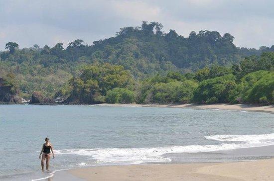 Playa Manuel Antonio: Great sandy beaches in the park...