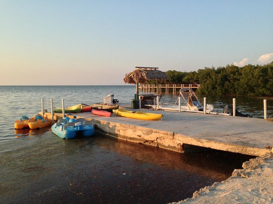 Gulf View Waterfront Resort: The kayaks, pedal boats, and canoes