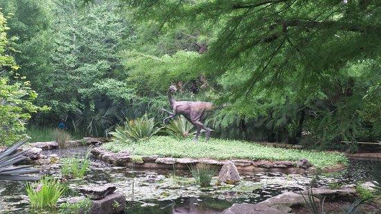 Zilker Botanical Garden: Dinosaur