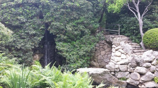 Zilker Botanical Garden: Japanese Garden