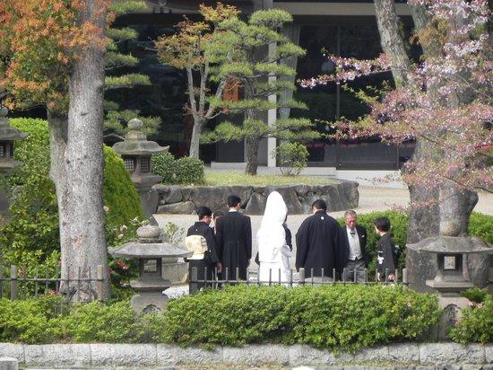 Sumiyoshi Taisha Shrine : traditional japanese marriage ritual conducted inside