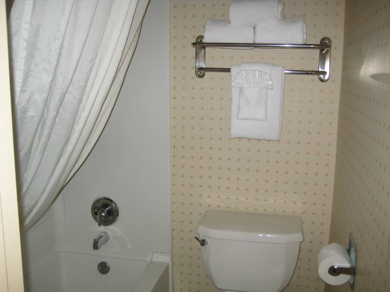 BEST WESTERN Mission Bay : Shower & Privy