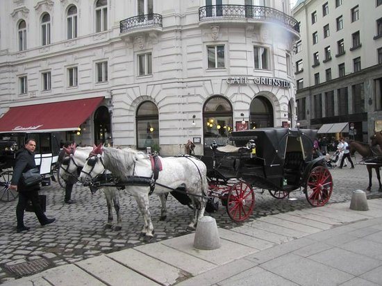 Historic Center of Vienna: Carriages waiting for another ride