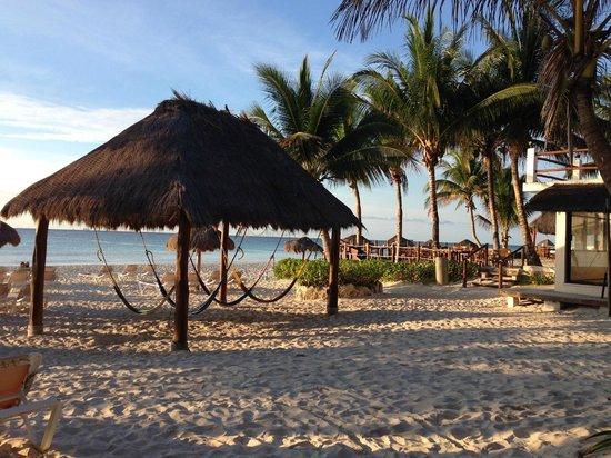 Petit Lafitte Playa