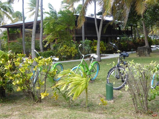 Palm Island Resort & Spa: bicicletas