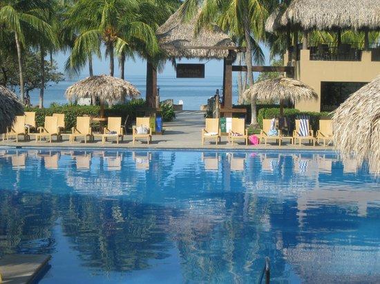 Flamingo Beach Resort & Spa: view from lobby!