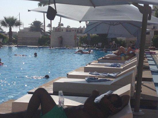 Nestor Hotel : Piscine (transats de luxe payants)