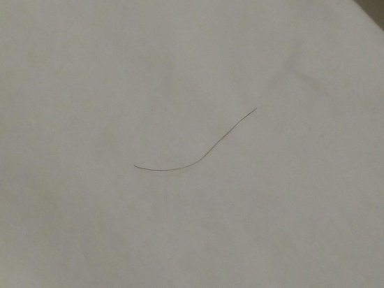 Quality Inn Newnan: More hair on the beds...yuck!