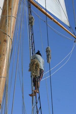 R. Tucker Thompson : Wayne up the main mast