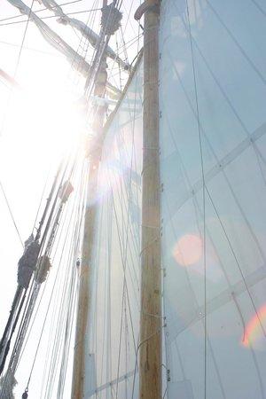 R. Tucker Thompson : Sunlight through the masts
