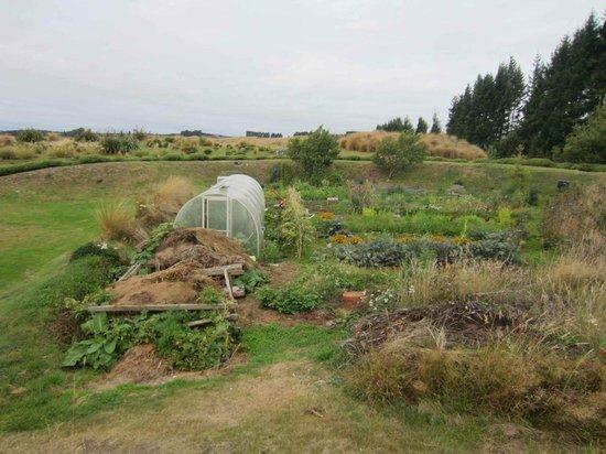 Fiordland Lodge: Vege garden