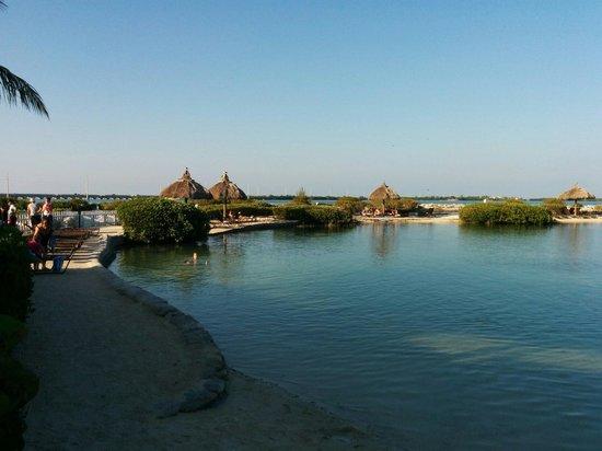 Hawks Cay Resort : Salt pool