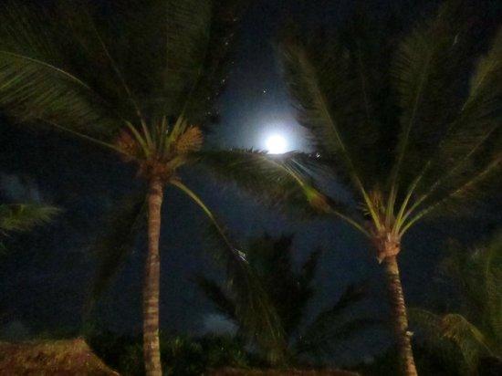 Grand Palladium Colonial Resort & Spa : Beachside Barbeque (Monday & Thursday Nights)