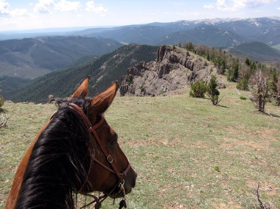 Covered Wagon Ranch: Saddle with a view