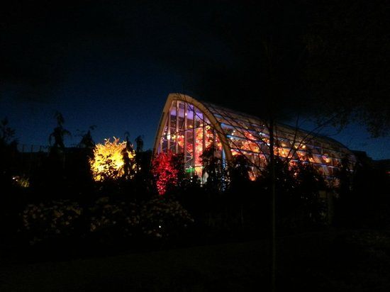 Chihuly Garden and Glass : Night View