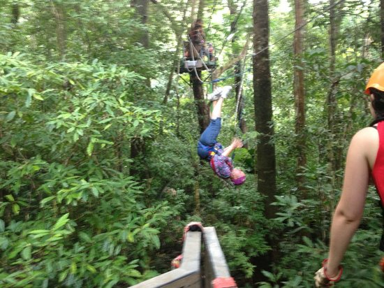Jungle Surfing Canopy Tours: Just hanging out in the jungle