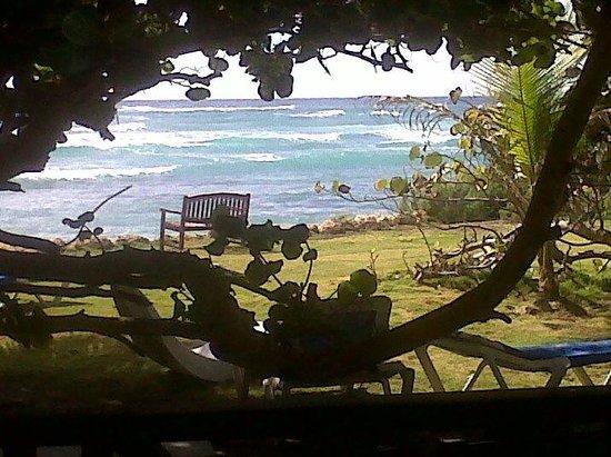 Ocean Spray Beach Apartments : vista desde el lugar del desayuno