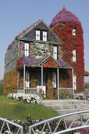 Дубай дома в цветах квартиры в дубай марина купить