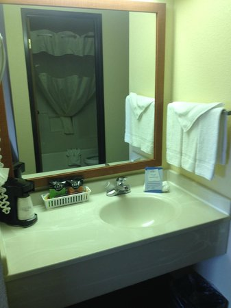 Baymont Inn & Suites Port Huron: Vanity area