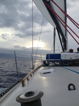 Scotch Mist Sailing Charters : Beautiful evening on the Scotch Mist II