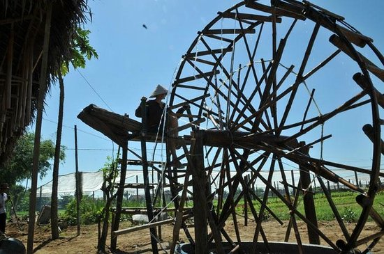 Tra Que Water Wheel : Water Wheel