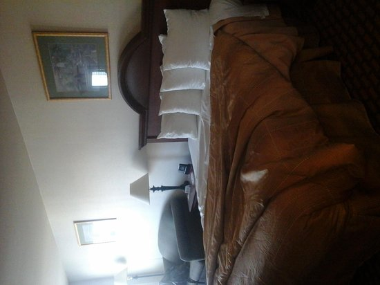 Ramada Limited San Francisco Airport North: king bed :)