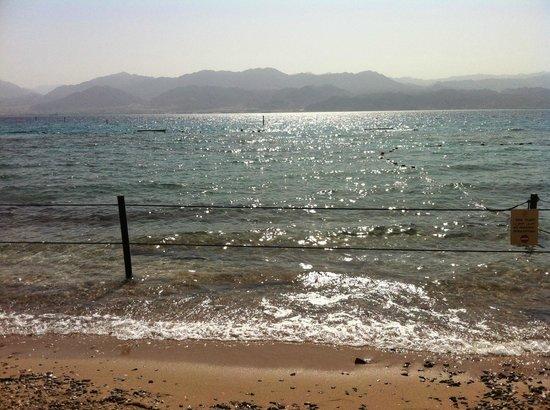 SPNI Eilat Field School: The beach opposite the field school