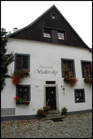 Penzionek Olsakovsky: Main entrance to the guest house