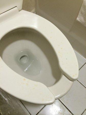 Days Inn Dillon: urine on toliet seat