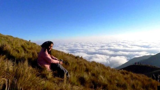 Mt. Pulag National Park: above the clouds