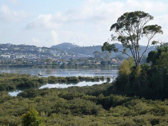 Orewa – Te Ara Tahuna Estuary Cycleway: Orewa Estuary & Mangroves