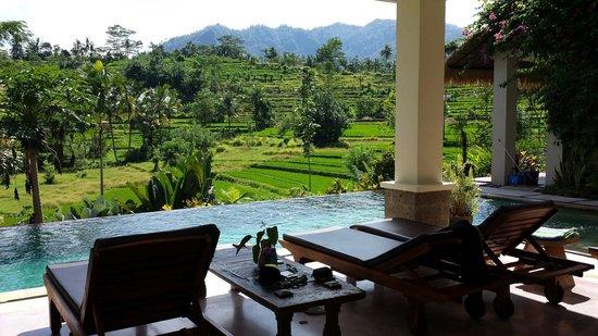 Surya Shanti Villa : Traumhafter pool