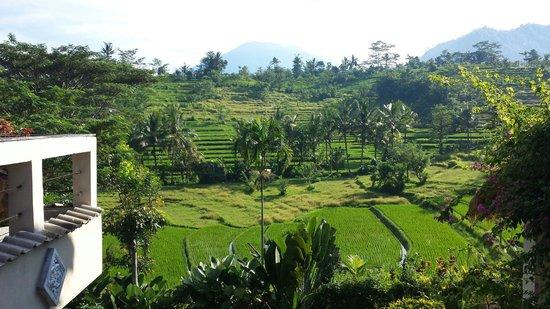 Surya Shanti Villa: Wunderschöne Aussicht