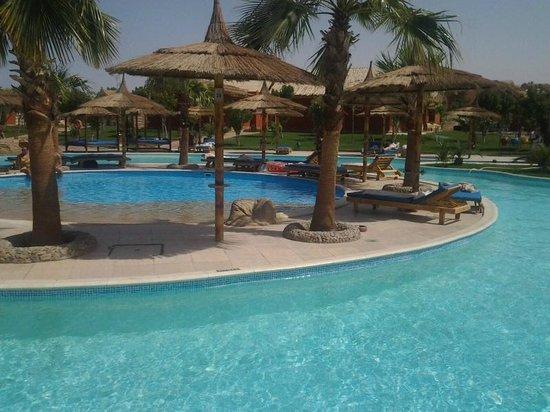 Jungle Aqua Park: Mini piscine