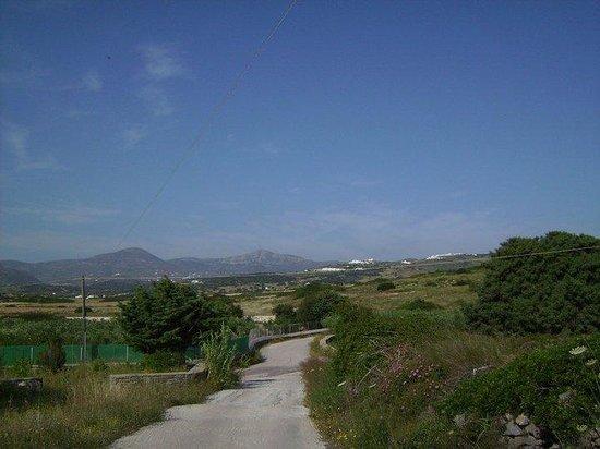 Eleana Studios: strada per Ambelas