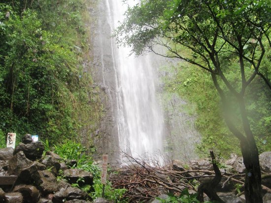 Manoa Falls : closeup of lower falls