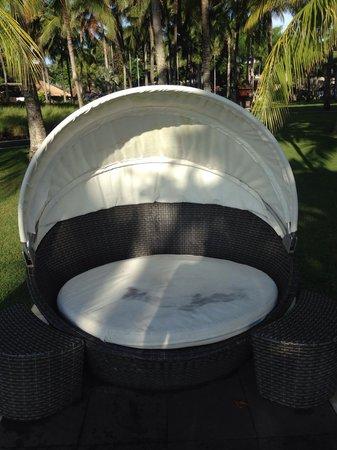 Club Med Bali: Mold