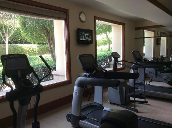 The Oberoi Amarvilas : Gym