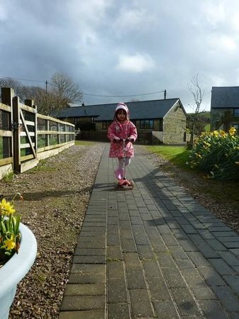 Nettlecombe Farm Holiday Cottages: swallow cottage in background, chickens to left, play area to the right