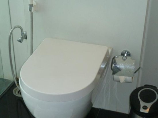 Springs Hotel & Spa : Commode