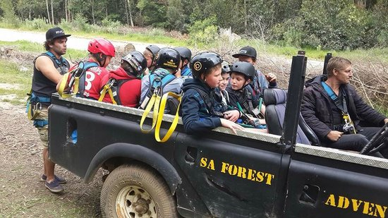 Hermanus Forest Adventures: Transport to the top of the mountain