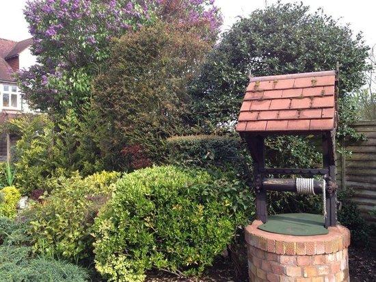 Bradbourne House : The garden