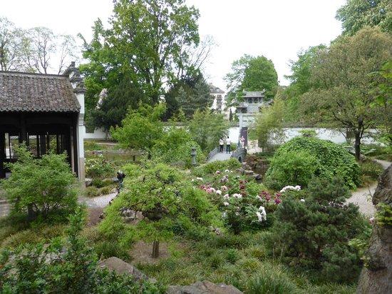Chinesischer garten picture of chinese garden frankfurt for Chinesischer garten