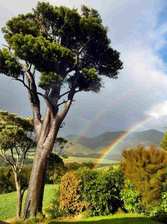 Catlins Mohua Park: Selbst bei Regen ist der Ausblick von der Terrasse begeisternd