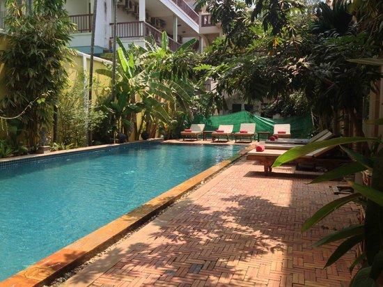 Golden Mango Inn : Pool