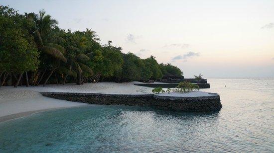 Lily Beach Resort & Spa: plage